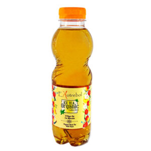 Ice Tea Bio Melocoton